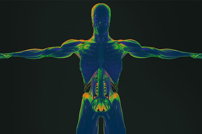 Bioimpedenziometria bilancia, bilancia di precisione bioimpedenziometrica