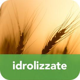 IDROLIZZATE